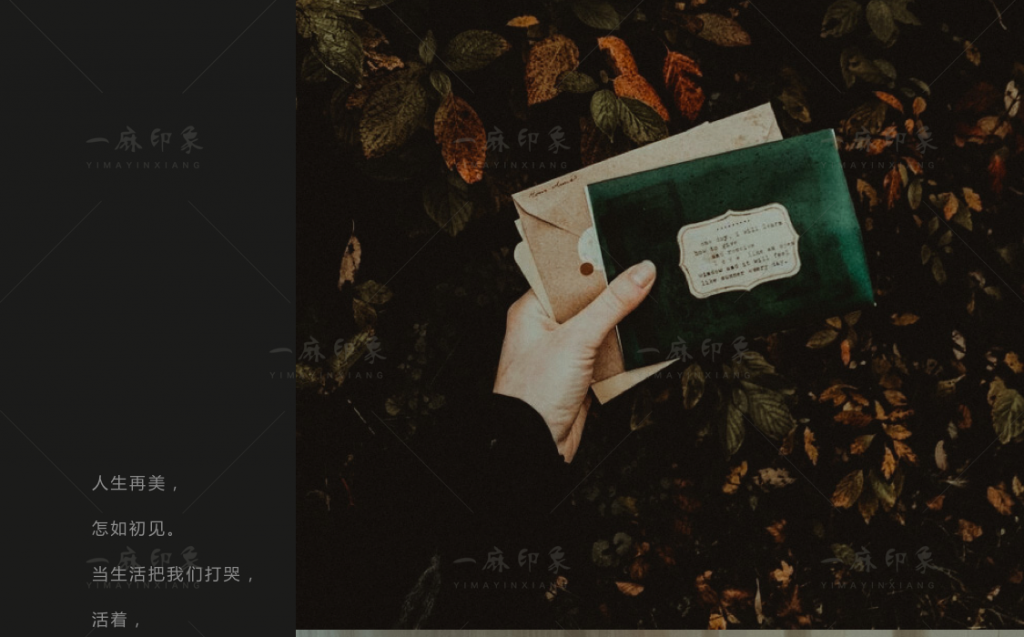 图片[4]-LR预设法式胶片人像莫兰迪PS/FCPX达芬奇手机版APP滤镜PR调色LUT-啾唧啾唧